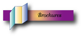 Our Business Brochures page