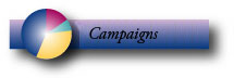 Our Business Campaigns Page